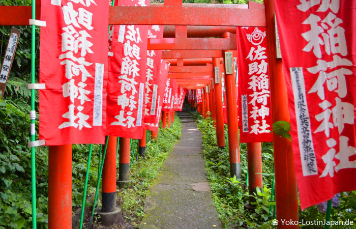 Sasuke Inari Schrein Kamakura